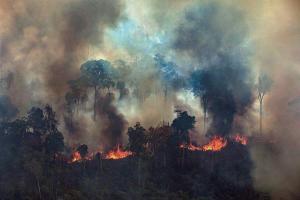 Cerca de mil militares y agentes brasileños combaten incendios en parque natural amazónico