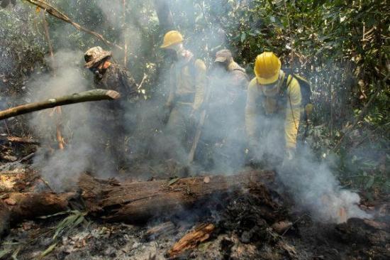 Identifican tres sospechosos de causar incendios en la Amazonia