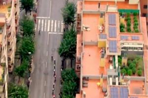 Localizan plantas de marihuana durante la transmisión de una carrera de ciclismo en España