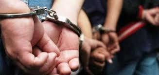 Desbaratan banda narco en Argentina que escondía cocaína en penes de adorno