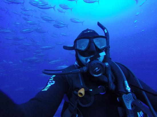 Un buzo cuenta cómo es su trabajo bajo el mar