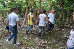 Hallan el cuerpo de una joven de 14 años en Santo Domingo