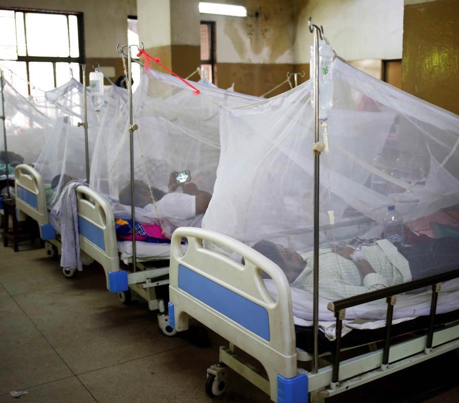 Sube a 17 la cifra de muertos por dengue en República Dominicana