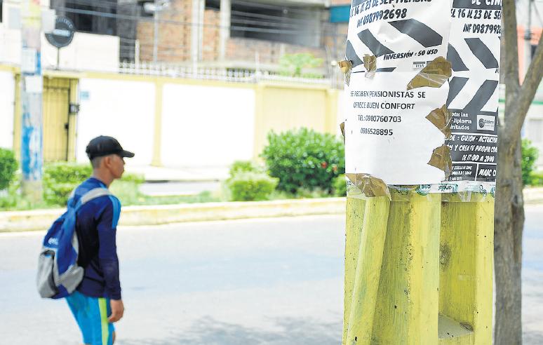 Multa de $98.5 por publicidad en los postes de Portoviejo