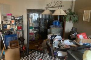 Hallan a 3 niñas y 245 animales en condiciones deplorables en una casa de Florida