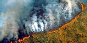 Deforestación en Amazonía brasileña alcanza mayor nivel en más de una década
