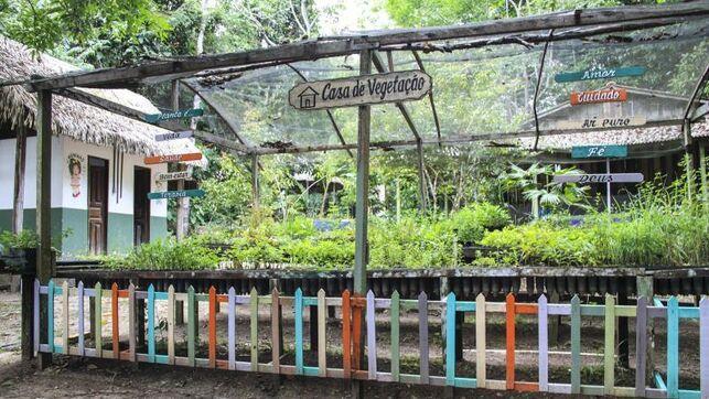 Una escuela en medio de la selva enseña a proteger la biodiversidad en Brasil