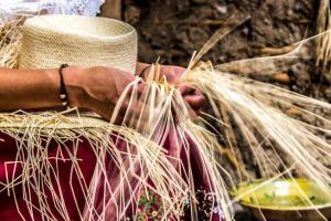 Artesanos del sombrero de paja toquilla piden que se fortalezca la actividad