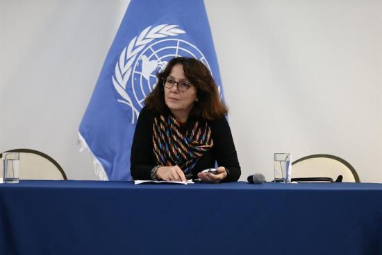 Relatora de violencia contra la mujer pide a Ecuador despenalizar el aborto