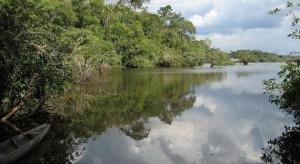 Indígenas de Ecuador pretenden proteger 30 millones de hectáreas en Amazonía
