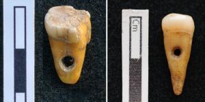Dientes humanos usados como joyería en Turquía hace 8.500 años