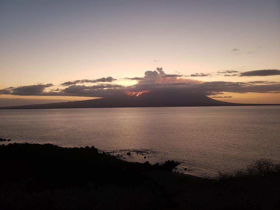 Reportan reducción de salida de magma del volcán La Cumbre, en Galápagos