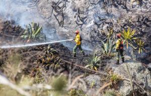 Sofocan incendio en cerro del norte de Quito después de más de 70 horas