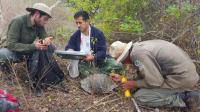 Expedición en volcán en Galápagos busca descendientes de especies extintas