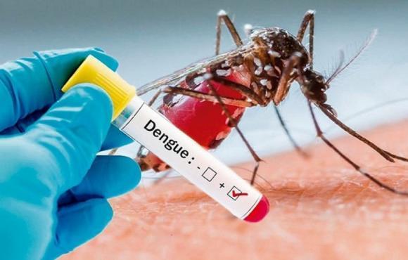 Brotes de dengue y sarampión se cobran sus dos primeras muertes en Argentina