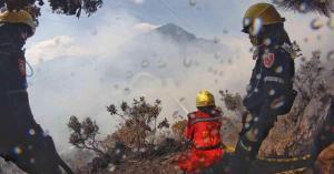 Incendios causados por criminales causan gran daño ecológico en Colombia
