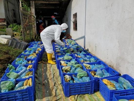 Agricultores solidarios en tiempos de coronavirus