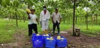 Los héroes del campo no paran sus actividades en medio de la emergencia sanitaria
