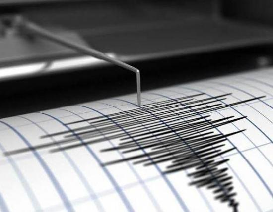 El ruido sísmico cae un 30% tras el confinamiento global por el covid-19