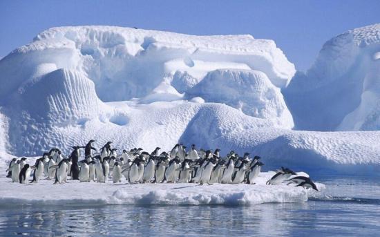 El Polo Norte se verá pronto libre de hielo