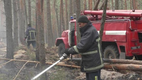 Incendios forestales persisten desde hace semanas en Chernóbil sin poner en riesgo la central nuclear