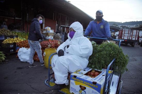 Ecuador registra 10.850 casos de coronavirus, 97 son de Santo Domingo