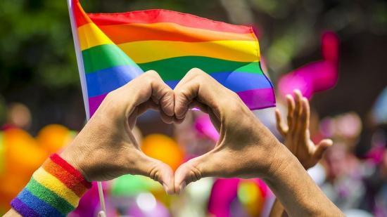 La comunidad LGBTI de Ecuador festeja el matrimonio igualitario en Costa Rica