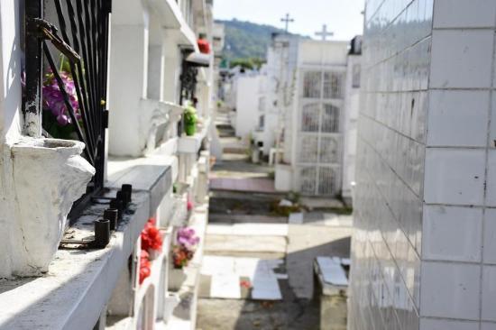 Portoviejo es el cantón de Manabí con más fallecidos en el mes de junio