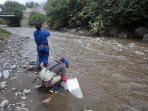 Un estudio encuentra huellas del SARS-CoV-2 en ríos de la capital de Ecuador