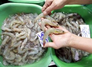 China suspende importación de camarones de Ecuador al detectar coronavirus en paquetes