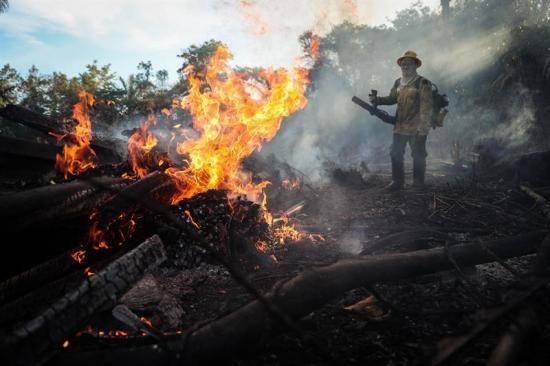 Los incendios vuelven a amenazar la Amazonía brasileña tras disparar en julio