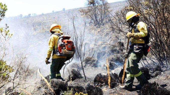 Bomberos de Quito intentan sofocar incendio en reserva ecológica Yanacocha
