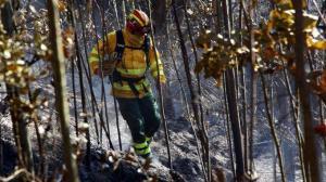Controlado incendio en el cerro Ilaló, cercano a la capital ecuatoriana