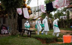 OMS: El ébola causa 32 muertos en 74 casos en el noroeste de la RD del Congo