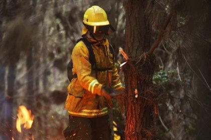 Incendio forestal deja ocho muertos y decenas de heridos al sur de Perú