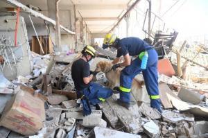 ONU calcula enormes daños en educación, sanidad y respuesta a COVID en Líbano