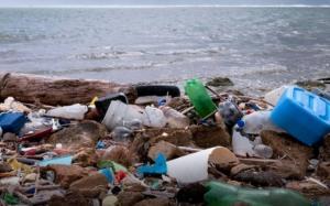 Ecuador sugiere idear una legislación mundial para cuidar los océanos