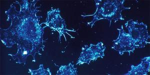 Identifican genes que permiten a células del cáncer eludir el sistema inmune