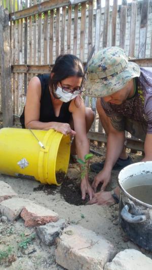 En Portoviejo buscan padrinos para 150 árboles