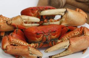 La primera veda del cangrejo rojo del 2021 será extensa