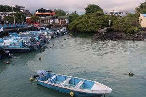 Pesca y sostenibilidad, un agrio debate que llega a las Islas Galápagos