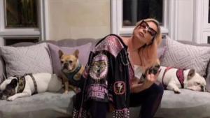 Lady Gaga recupera ilesos a los dos perros que le habían robado