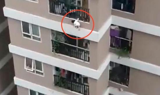 Un repartidor salva a una niña que cayó de una altura de 12 pisos en Vietnam