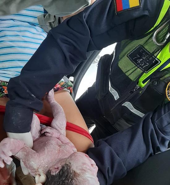 Agentes de la CTE asisten un parto en un patrullero, en Quevedo